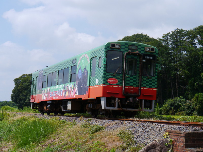 P1160065