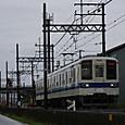 Imgp1229